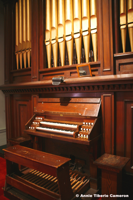 Close-up of organ